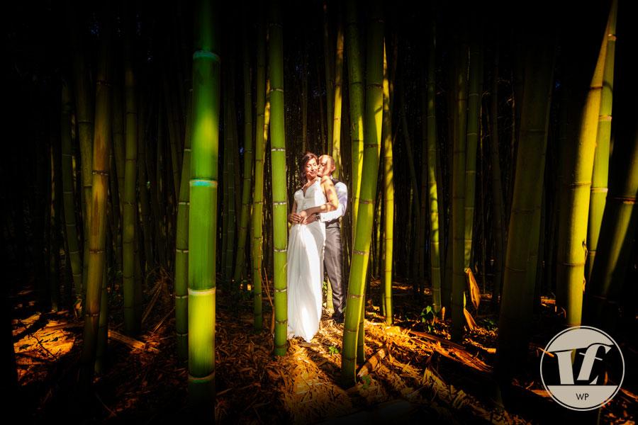 Fotografo matrimoni Vicenza - Villa Tacchi Quinto Vicentino. Luca Fabbian
